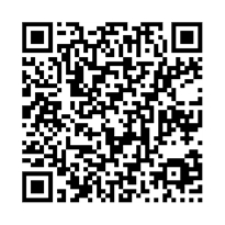 QR link for New Relativistic Paradoxes and Open Questions